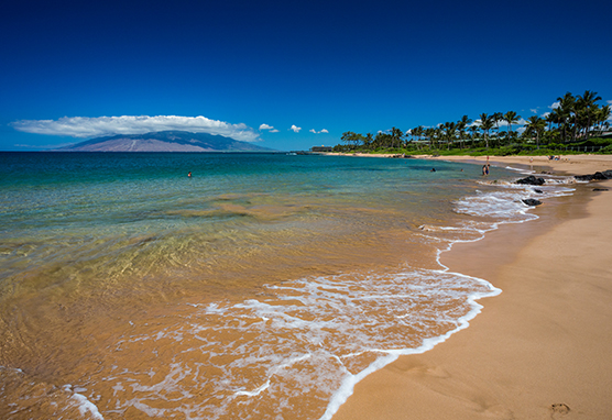 © Hawaii Tourism Authority Tor Johnson Maui Strand