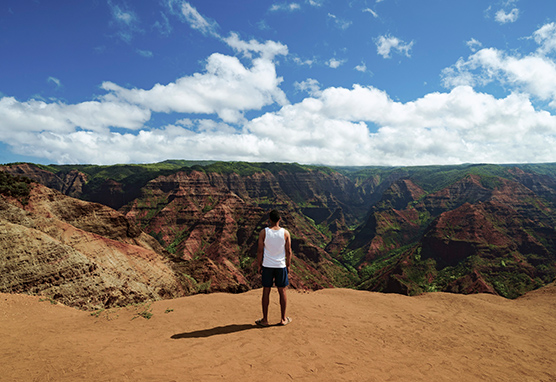 © Hawaii Tourism Authority Blake Bronstad Waimea Canyon Kauai Reiseagentur myinspi