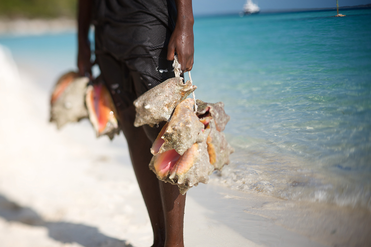 © Bahamas Tourist Office Pete Webb Boy with Conch 2